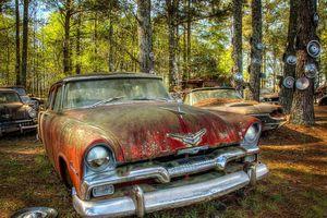 Ghé thăm 'vương quốc' xe cổ bị lãng quên trong rừng