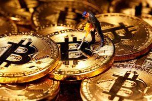 Bitcoin bất ngờ tăng mạnh sau chuỗi ngày dài lao dốc