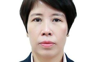 Chân dung tân nữ Thứ trưởng sinh năm 1971 của Bộ Kế hoạch và Đầu tư