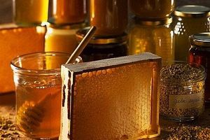 Hoa Kỳ điều tra chống bán phá giá mật ong có xuất xứ từ Việt Nam và 4 nước khác
