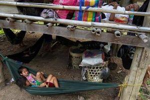 Hàng nghìn dân Myanmar trốn sang Thái Lan tránh chiến sự
