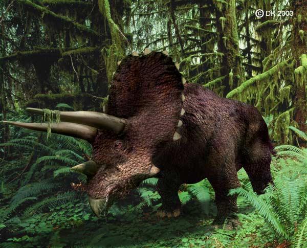 Tìm thấy cặp đôi khủng long chết vì đánh nhau rồi hóa đá Ảnh 3
