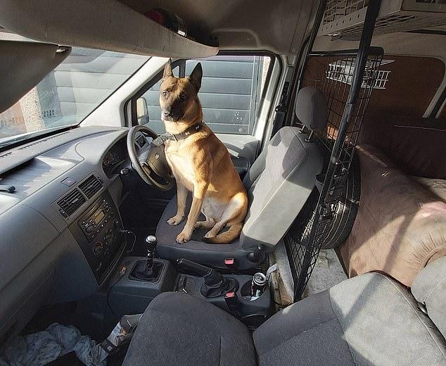 Tài xế gây tai nạn rồi bỏ trốn, cảnh sát đến hiện trường thì ngỡ ngàng với 'người' ngồi trong xe suốt cả đêm, đến dân mạng cũng phải thương Ảnh 1