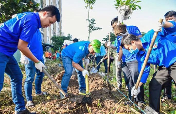 Chung tay cải thiện môi trường sống Ảnh 1