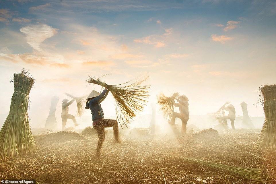 Nhiều ảnh chụp Việt Nam tranh giải Best Photo Of 2020 của Agora Ảnh 1