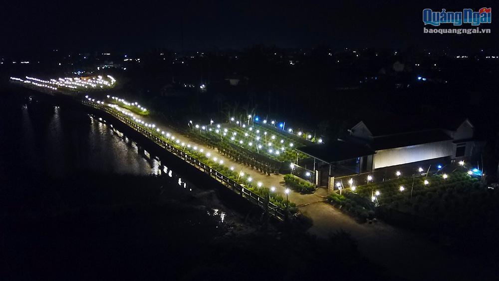 Chong đèn cho hoa Tết Ảnh 1