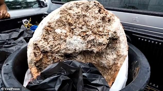 Ngư dân Thái Lan phát hiện khối u nghi là 'bãi nôn cá voi', có giá 74 tỉ đồng Ảnh 3