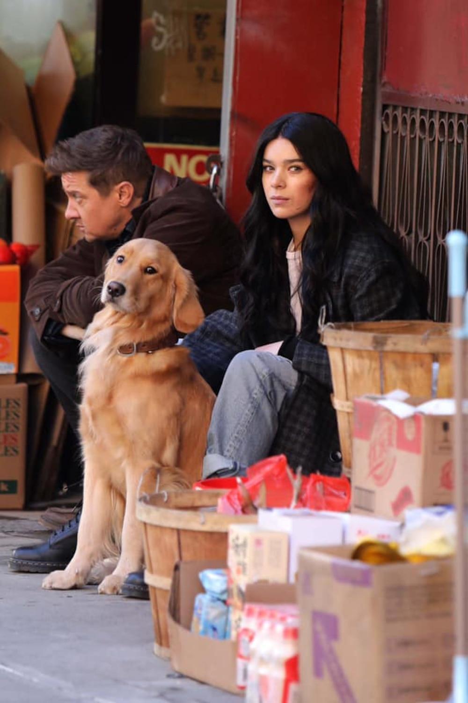 Kẻ chiếm spotlight nhất series 'Hawkeye' không phải nhân vật chính mà là chú chó 'Gâu Đần', ngộ chưa? Ảnh 5