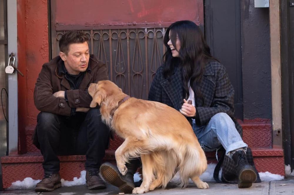 Kẻ chiếm spotlight nhất series 'Hawkeye' không phải nhân vật chính mà là chú chó 'Gâu Đần', ngộ chưa? Ảnh 3