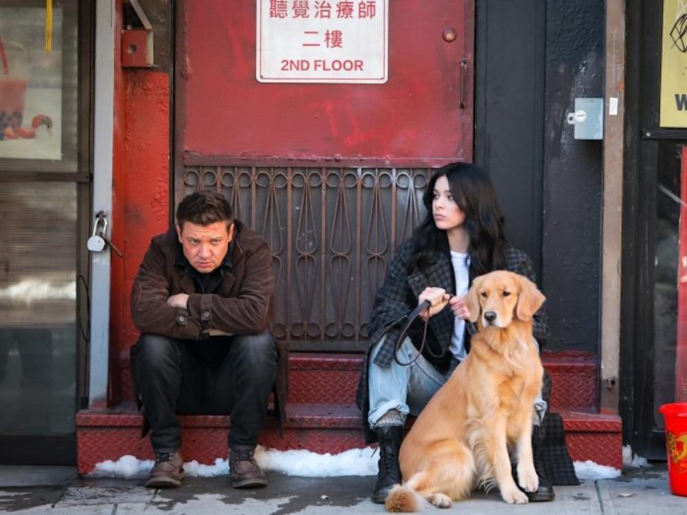Kẻ chiếm spotlight nhất series 'Hawkeye' không phải nhân vật chính mà là chú chó 'Gâu Đần', ngộ chưa? Ảnh 6