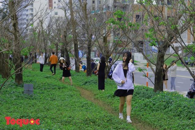 Giới trẻ hào hứng 'check-in' hàng cây rụng lá đẹp như tranh vẽ ở Đà Nẵng Ảnh 8