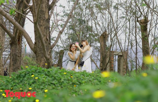 Giới trẻ hào hứng 'check-in' hàng cây rụng lá đẹp như tranh vẽ ở Đà Nẵng Ảnh 3