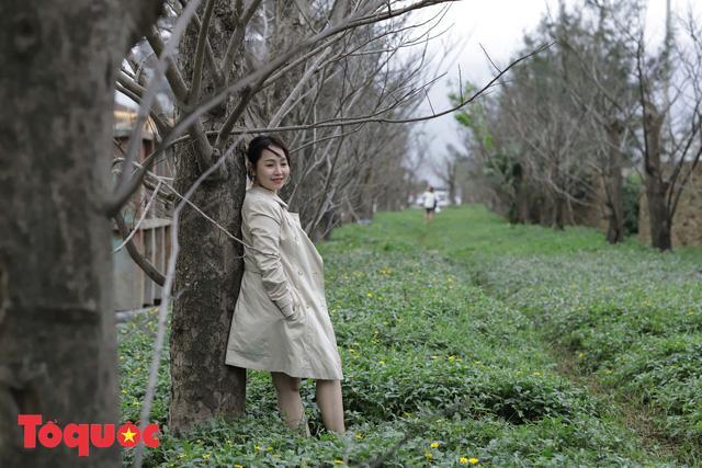 Giới trẻ hào hứng 'check-in' hàng cây rụng lá đẹp như tranh vẽ ở Đà Nẵng Ảnh 4