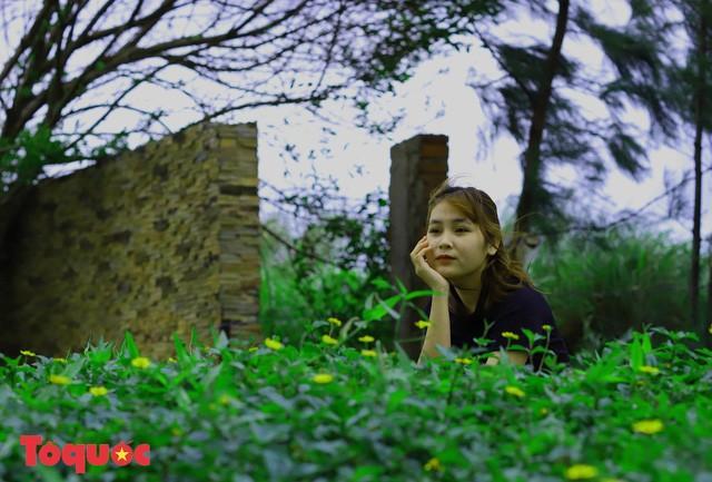 Giới trẻ hào hứng 'check-in' hàng cây rụng lá đẹp như tranh vẽ ở Đà Nẵng Ảnh 12