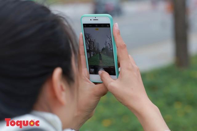 Giới trẻ hào hứng 'check-in' hàng cây rụng lá đẹp như tranh vẽ ở Đà Nẵng Ảnh 10