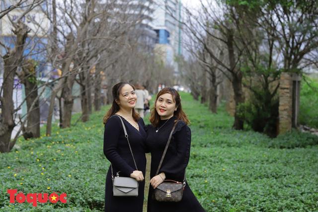 Giới trẻ hào hứng 'check-in' hàng cây rụng lá đẹp như tranh vẽ ở Đà Nẵng Ảnh 5