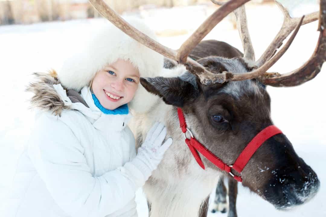 Ghé thăm xứ sở thần tiên Lapland – Quê hương ông già Noel Ảnh 6