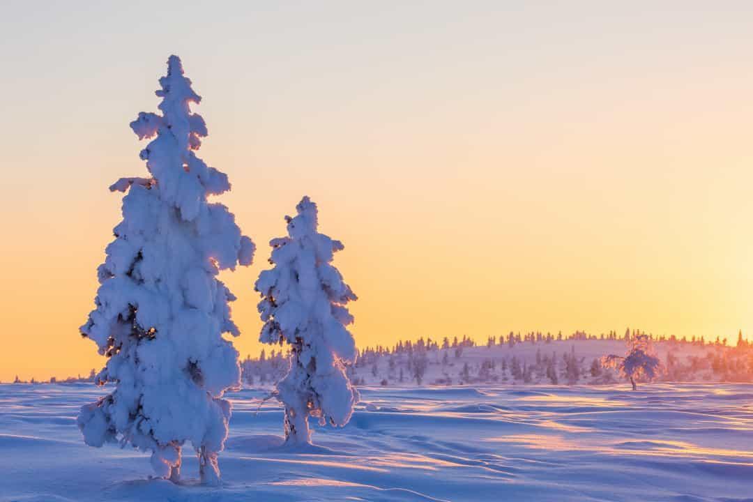 Ghé thăm xứ sở thần tiên Lapland – Quê hương ông già Noel Ảnh 5