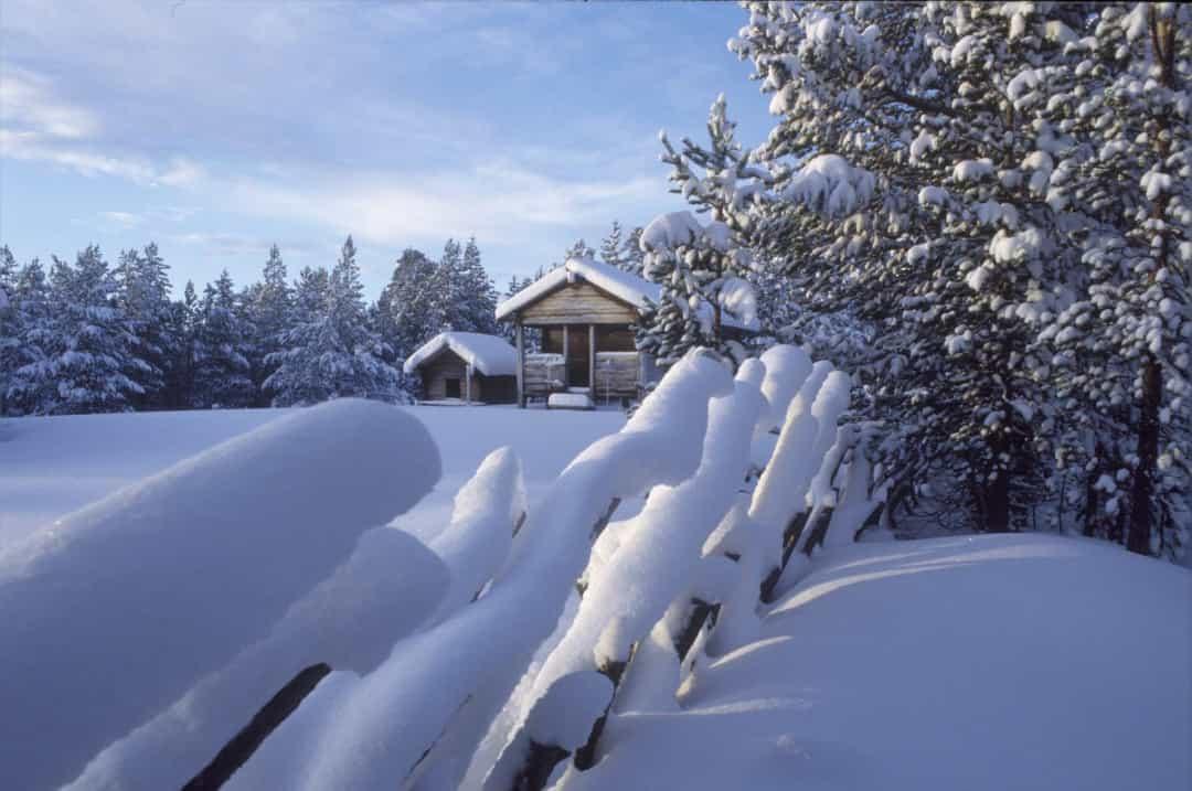 Ghé thăm xứ sở thần tiên Lapland – Quê hương ông già Noel Ảnh 3