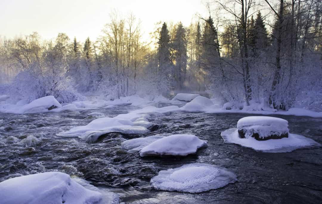 Ghé thăm xứ sở thần tiên Lapland – Quê hương ông già Noel Ảnh 18