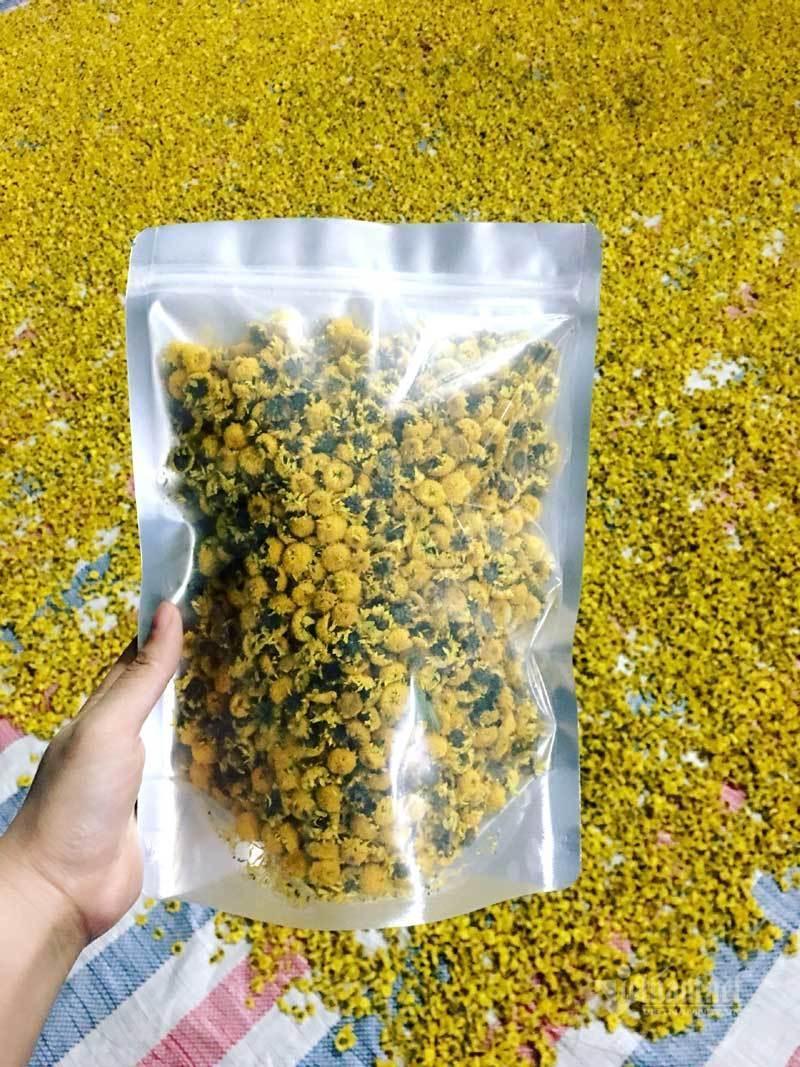 Thảm hoa vàng rực ở Hưng Yên, nhanh tay thu hái gom về tiền tỷ Ảnh 14