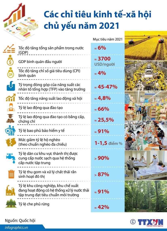 Các chỉ tiêu kinh tế-xã hội chủ yếu năm 2021 Ảnh 1