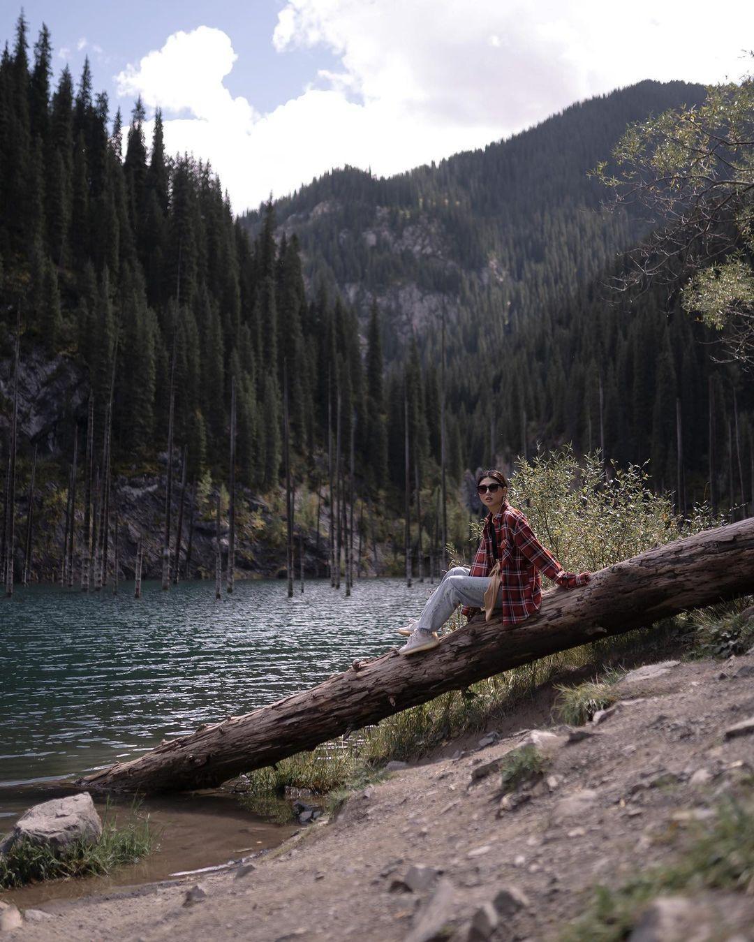 Hồ nước có rừng cây mọc ngược từ dưới đáy Ảnh 10
