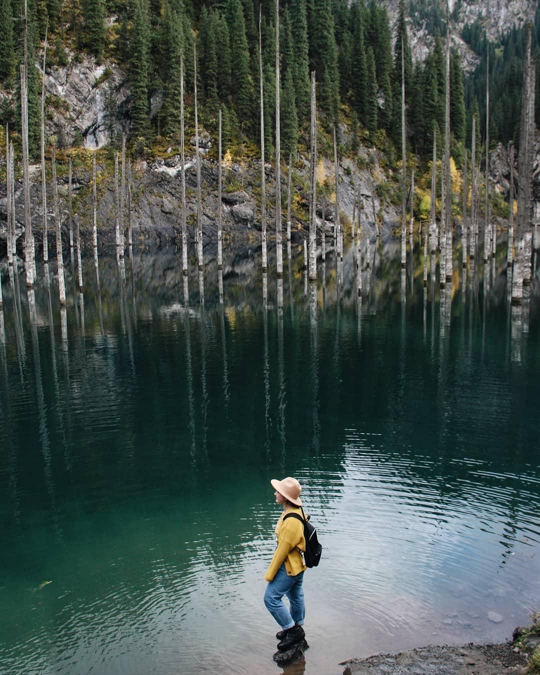 Hồ nước có rừng cây mọc ngược từ dưới đáy Ảnh 9