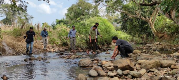 Chiêm ngưỡng hàng ngàn cây Lim xanh ở rừng Sông Móng – Capét Ảnh 11