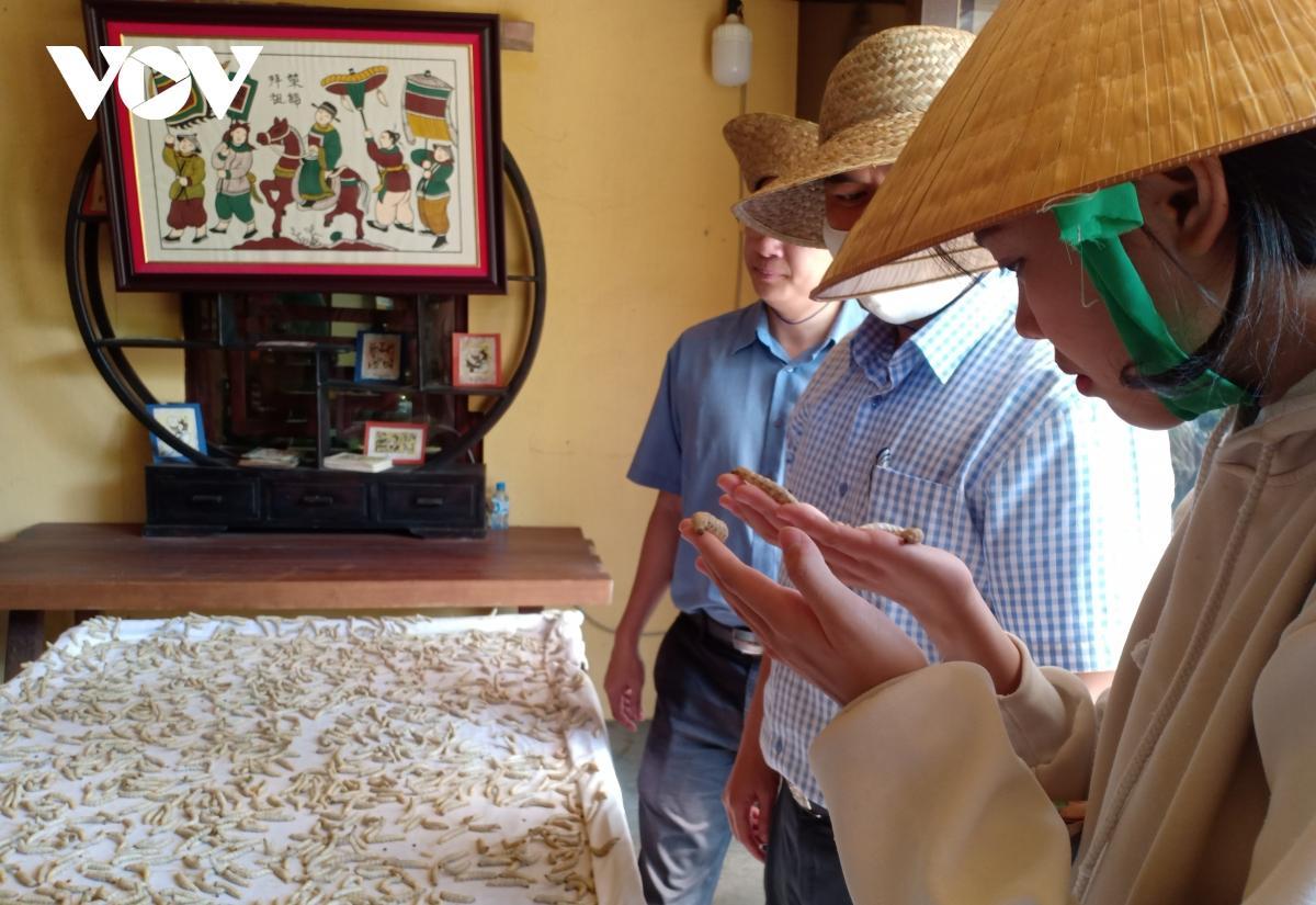 Biến sình lầy thành điểm du lịch lịch sử, văn hóa Ảnh 6