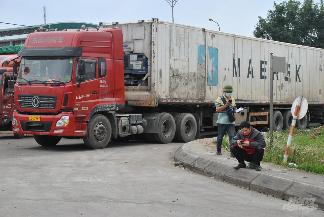 Xe thùng rỗng vây cửa khẩu Kim Thành Ảnh 3