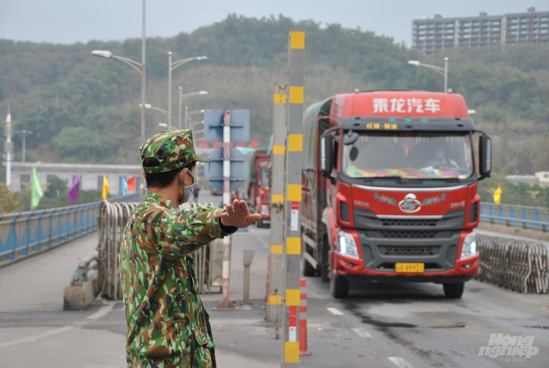 Xe thùng rỗng vây cửa khẩu Kim Thành Ảnh 10