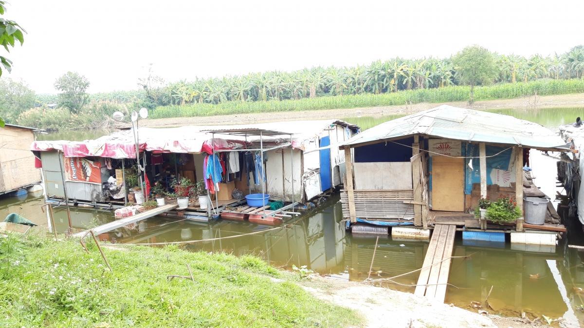 Người dân 'xóm phao' trên sông Hồng và ước mong về một cái Tết bình dị Ảnh 2