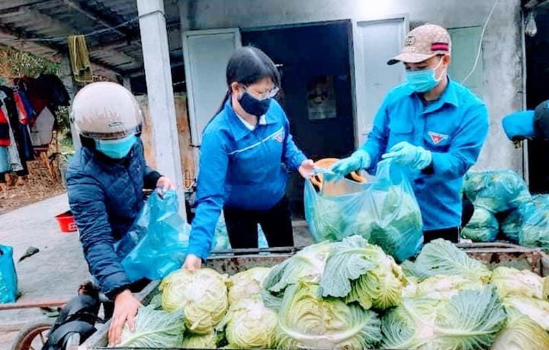 Chung tay hỗ trợ nông dân vượt qua khó khăn trong đại dịch Ảnh 1