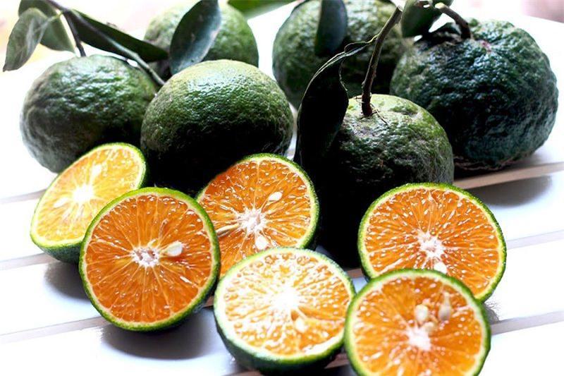 Thực phẩm làm giảm nguy cơ ung thư tuyến tiền liệt Ảnh 1