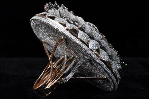 Ngắm chiếc nhẫn giành kỷ lục Guinness vì đính 12.638 viên kim cương Ảnh 2