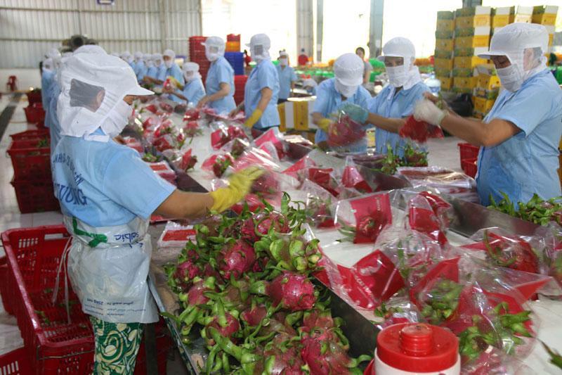 Kim ngạch thương mại song phương Việt-Anh 'bứt phá' ngay từ đầu năm Ảnh 1