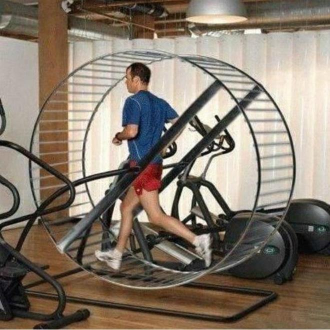 Khi phòng tập gym thành nơi tấu hài, xem xong chỉ muốn lao ngay đến phòng tập để hóng 'drama' Ảnh 10
