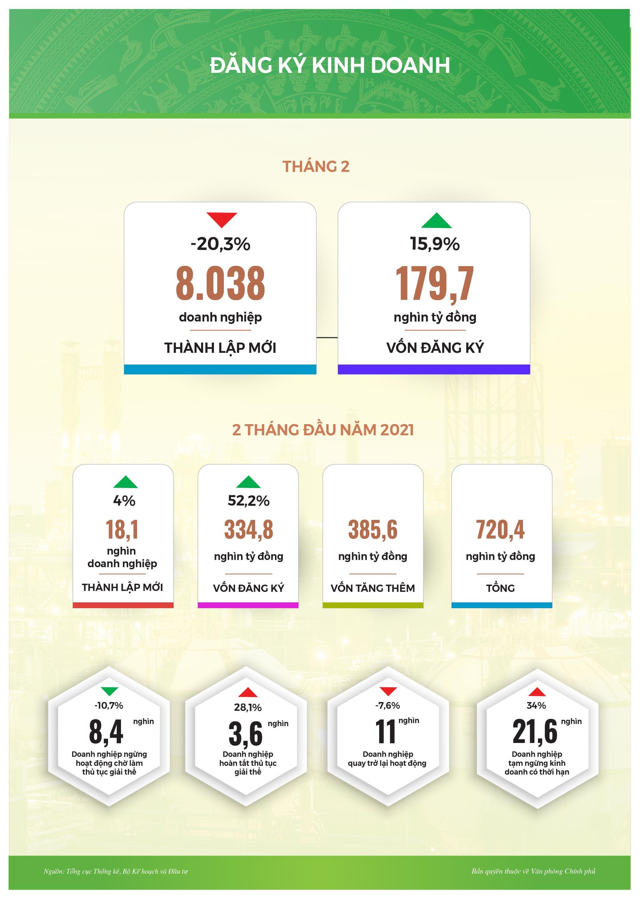 Infographic: Tình hình kinh tế-xã hội tháng 2/2021 Ảnh 4