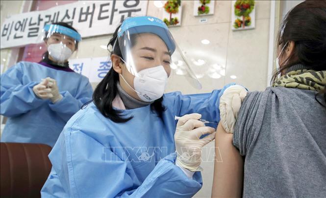 Tranh cãi việc tăng liều tiêm của mỗi lọ vaccine ở Hàn Quốc Ảnh 1