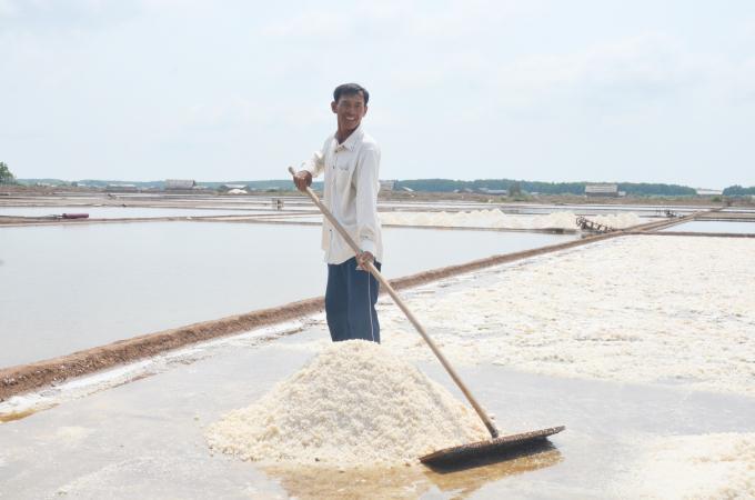 Bến Tre: Cần tổ chức lại sản xuất nghề muối Ảnh 1
