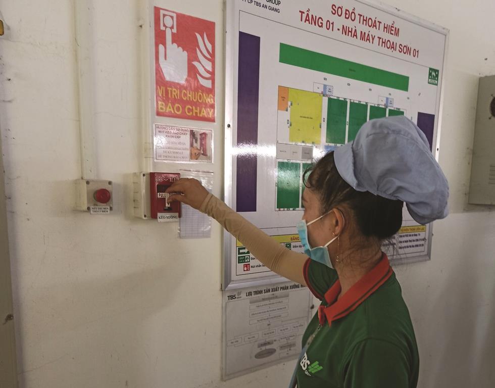 Đảm bảo an toàn vệ sinh lao động trong doanh nghiệp Ảnh 2