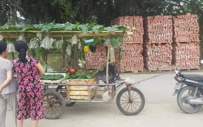 Hình ảnh khó tin người bán hạt giống chở cả dàn bí, thùng rau trên xe đẩy, dân mạng khen hết lời vì lý do này Ảnh 1