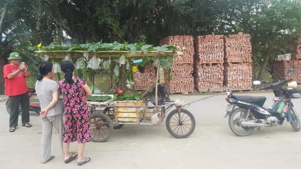 Hình ảnh khó tin người bán hạt giống chở cả dàn bí, thùng rau trên xe đẩy, dân mạng khen hết lời vì lý do này Ảnh 2