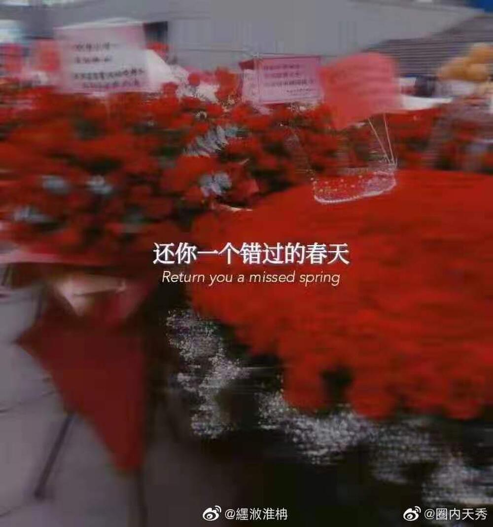 Một 'rừng hoa' của fan gửi trước nhà hát để chúc mừng Tiêu Chiến với vai diễn thành công rực rỡ Ảnh 9