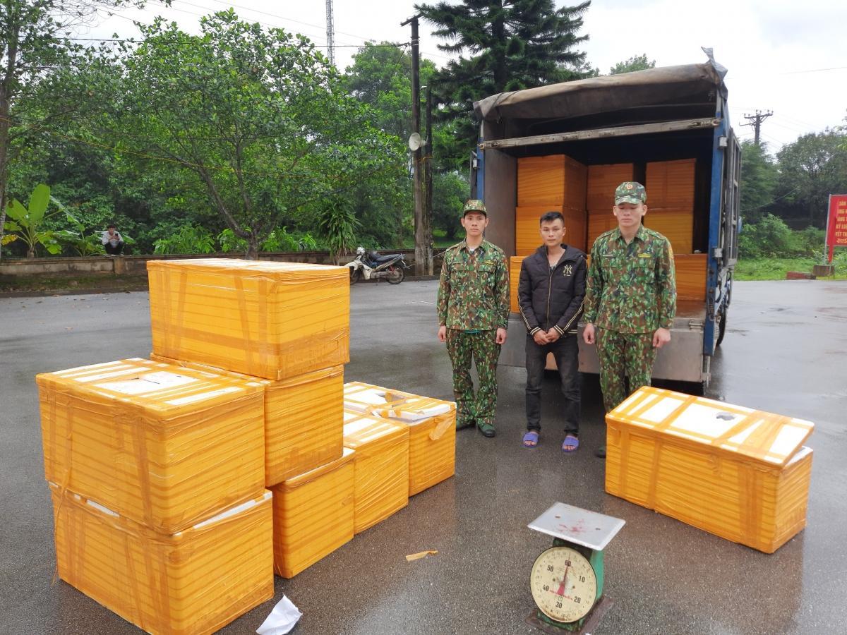Quảng Ninh bắt giữ hơn 500kg cá tầm Trung Quốc nhập lậu Ảnh 1