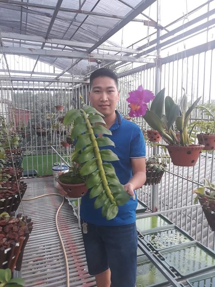 Khám phá vườn lan đẹp của ông chủ Duy Trọng Hải Ảnh 3