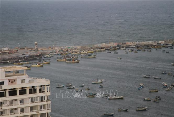 Israel mở lại khu vực đánh cá tại Dải Gaza Ảnh 1