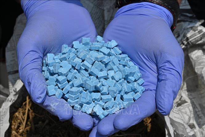 Indonesia triệt phá đường dây buôn ma túy quốc tế lớn Ảnh 1