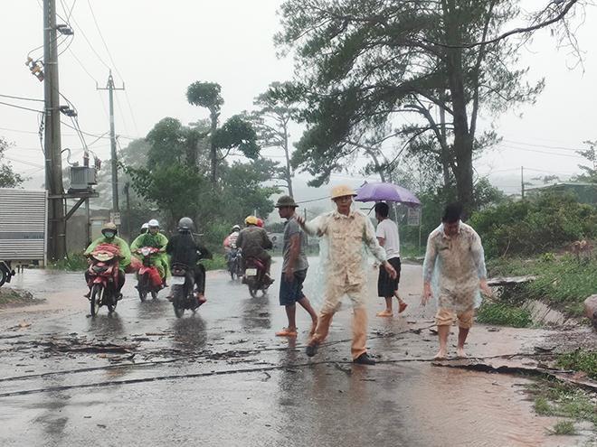 CSGT dầm mưa cùng người dân dọn cây gỗ lớn đổ ngang đường Ảnh 4